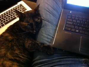 Licorice provides work assistance